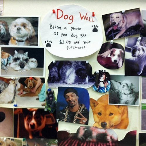dogs snoop wall - 7039156480