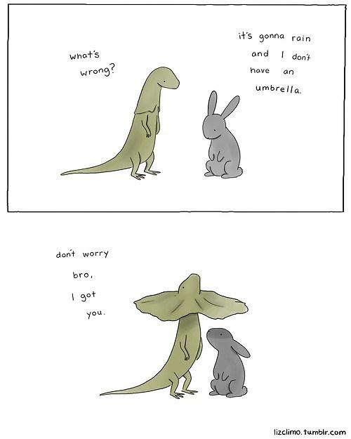 umbrella interspecies friends comic lizard rabbit bunny rain - 7039390720