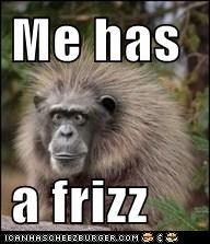 Me has   a frizz