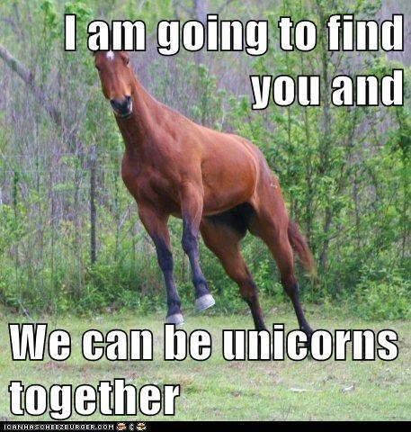 I am going to find you and We can be unicorns together