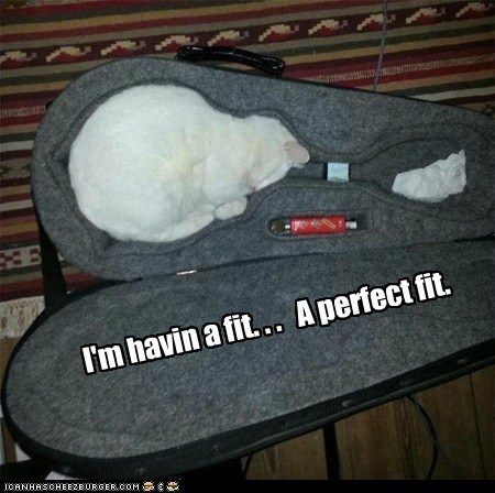 I'm havin a fit. . . A perfect fit.