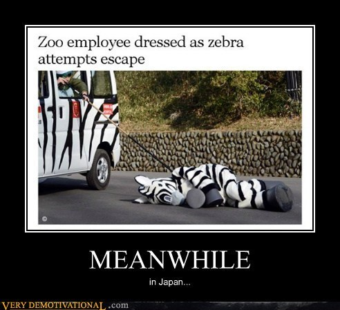 zebra wtf escape Japan