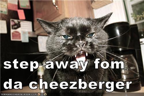 Cheezburger Image 7041172480