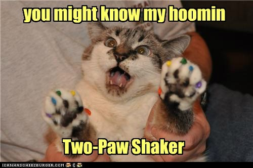 Two-Paw Shaker you might know my hoomin