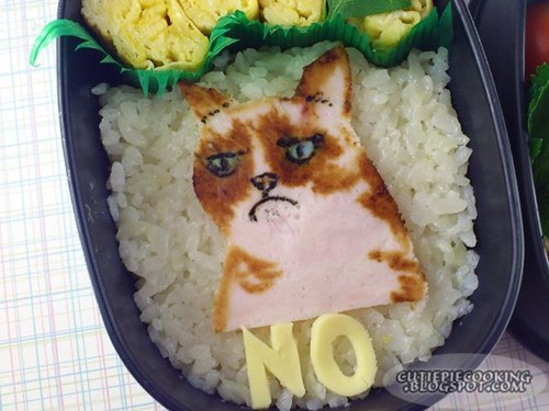 tardar sauce lunch dinner food bento box rice Grumpy Cat