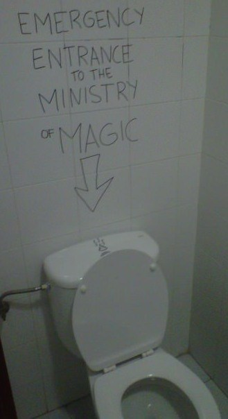 ministry of magic,head first,bathroom,toilet