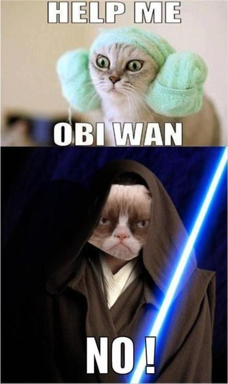 obi-wan kenobi star wars Grumpy Cat - 7041871872