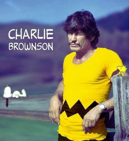 shoop mashup charles bronson similar sounding charlie brown - 7042461952