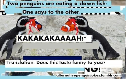 taste,clown,translation,language,clown fish,double meaning,penguin,funny