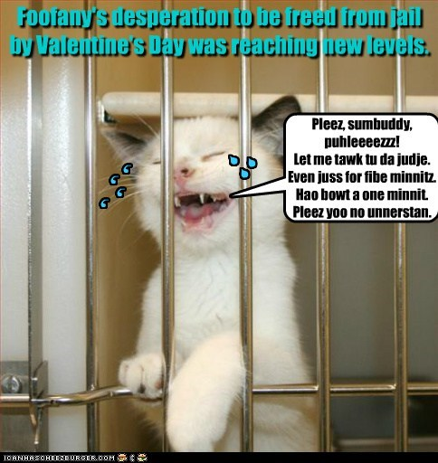 Foofany's desperation to be freed from jail by Valentine's Day was reaching new levels. Pleez, sumbuddy, puhleeeezzz! Let me tawk tu da judje. Even juss for fibe minnitz. Hao bowt a one minnit. Pleez yoo no unnerstan. , , , , S S S