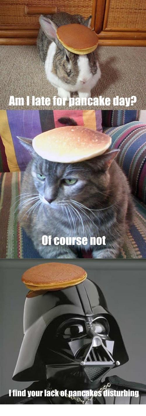 Cheezburger Image 7043042560