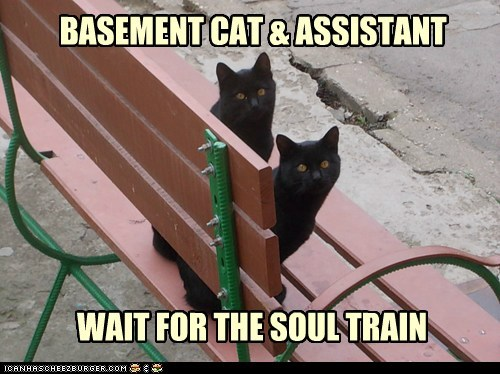 WAIT FOR THE SOUL TRAIN BASEMENT CAT & ASSISTANT