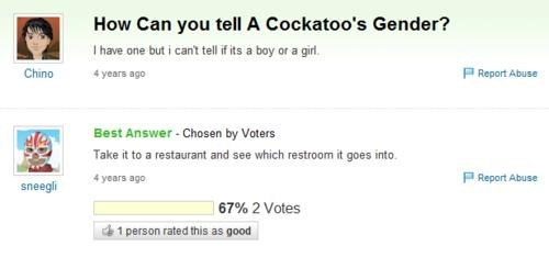 cockatoo restroom yahoo answers