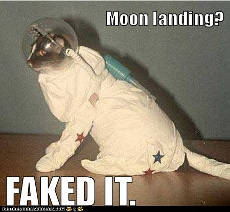 costume cat moon funny space - 7044003584