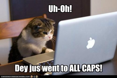 cat internet computer funny - 7044010240