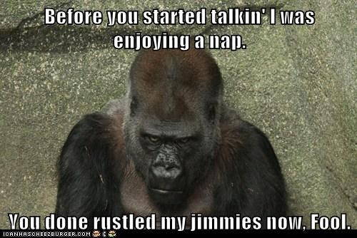 Before you started talkin' I was enjoying a nap. You done rustled my jimmies now, Fool.