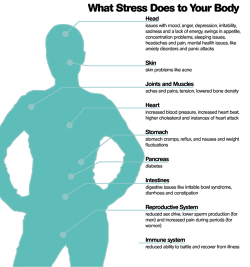 stress health body