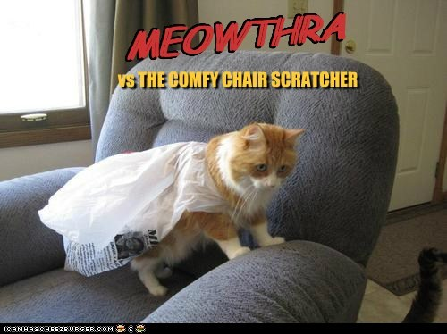 MEOWTHRA MEOWTHRA vs THE COMFY CHAIR SCRATCHER
