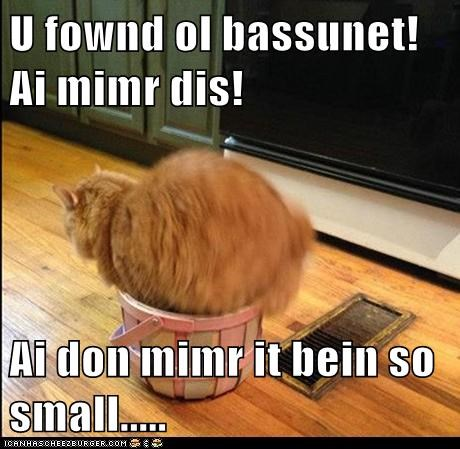 U fownd ol bassunet! Ai mimr dis!  Ai don mimr it bein so small.....