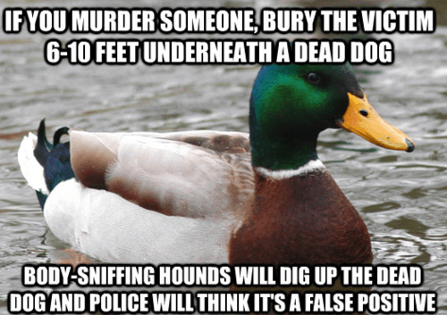 murder wtf Actual Advice Mallard - 7044780800