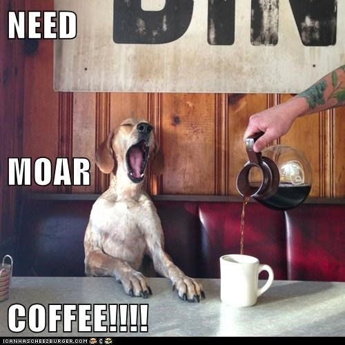 NEED MOAR COFFEE!!!!
