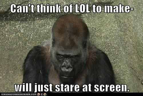 Staring gorillas lol grumpy screen