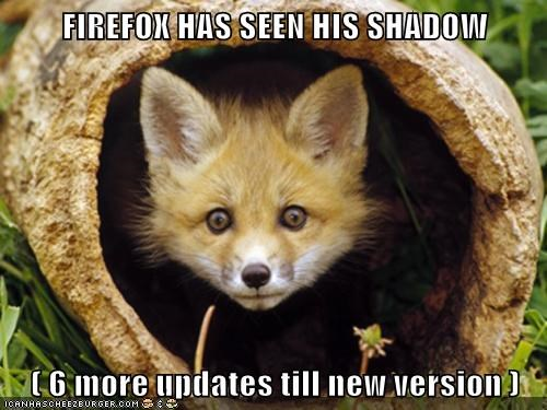 FIREFOX HAS SEEN HIS SHADOW ( 6 more updates till new version )
