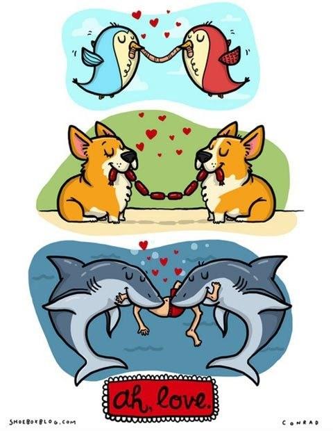 birds romance corgi sharks comic love Valentines day - 7047260928