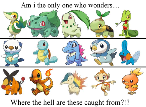 wtf starters please explain catching them - 7047401216