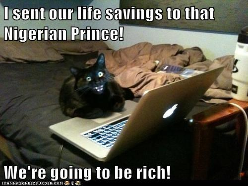 cat internet computer funny money - 7048009472