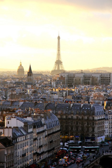 paris,cityscape,eiffel tower,Valentines day