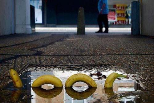 Street Art,banana,loch ness
