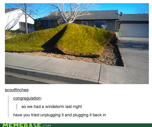 wtf tumblr lawns windstorms - 7048443648