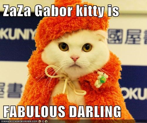 ZaZa Gabor kitty is FABULOUS DARLING