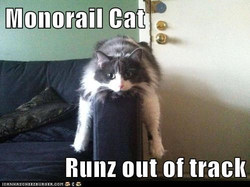 monorail cat Cats train