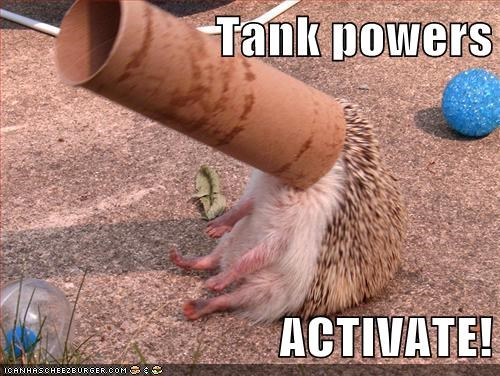 tank,toilet roll,hedgehogs,activate