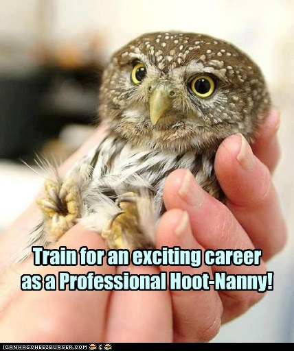 Train for an exciting career as a Professional Hoot-Nanny!