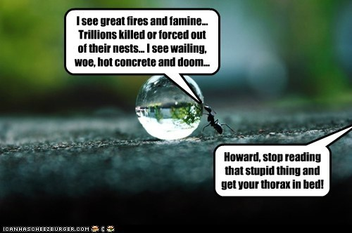 I see great fires and famine... Trillions killed or forced out of their nests... I see wailing, woe, hot concrete and doom... Howard, stop reading that stupid thing and get your thorax in bed!