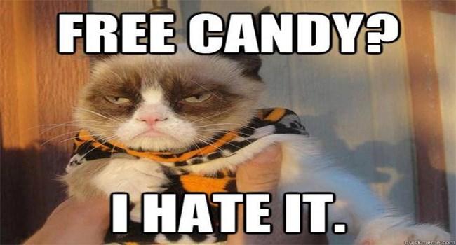 hates Grumpy Cat halloween funny memes halloween memes Memes - 7049477