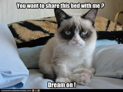 You want to share this bed with me ? Dream on !