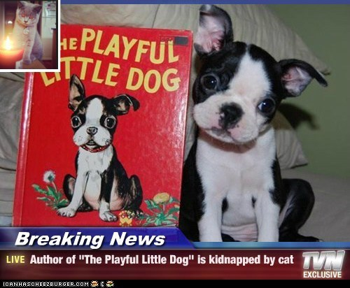 "Breaking News - Author of ""The Playful Little Dog"" is kidnapped by cat"