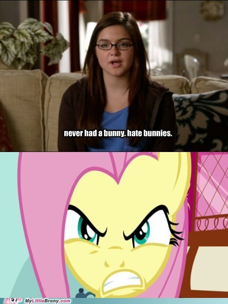 bunnies Modern Family angel fluttershy - 7050244352