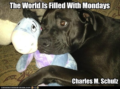 The World Is Filled With Mondays Charles M. Schulz