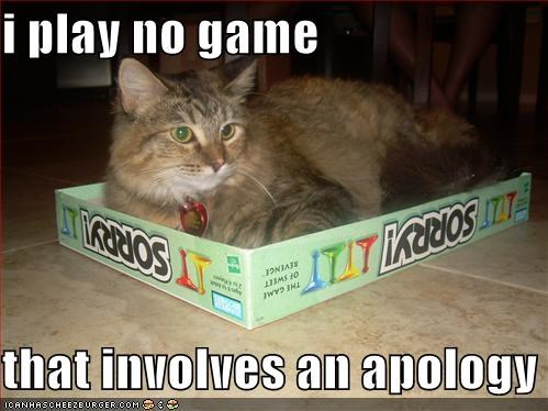 apology game lolcats sorry - 705068800