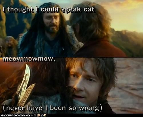 I thought I could speak cat meowmowmow, (never have I been so wrong)