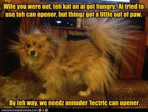 Wile you were out, teh kat an ai got hungry. Ai tried to use teh can opener, but thingz got a little out of paw. By teh way, we needz annuder 'lectric can opener.