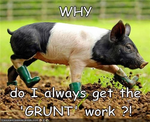 WHY do I always get the 'GRUNT' work ?!