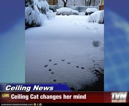 Ceiling News - Ceiling Cat changes her mind