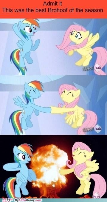brohoof,fluttershy,rainbow dash