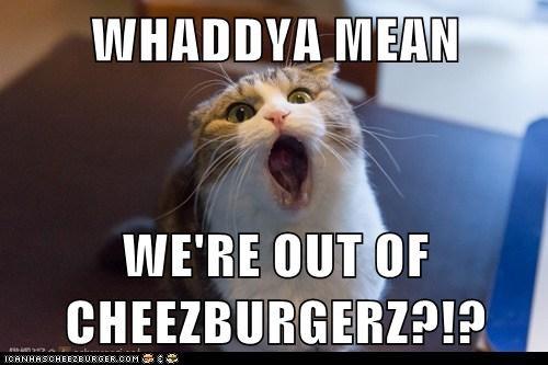 Cheezburger Image 7052722432